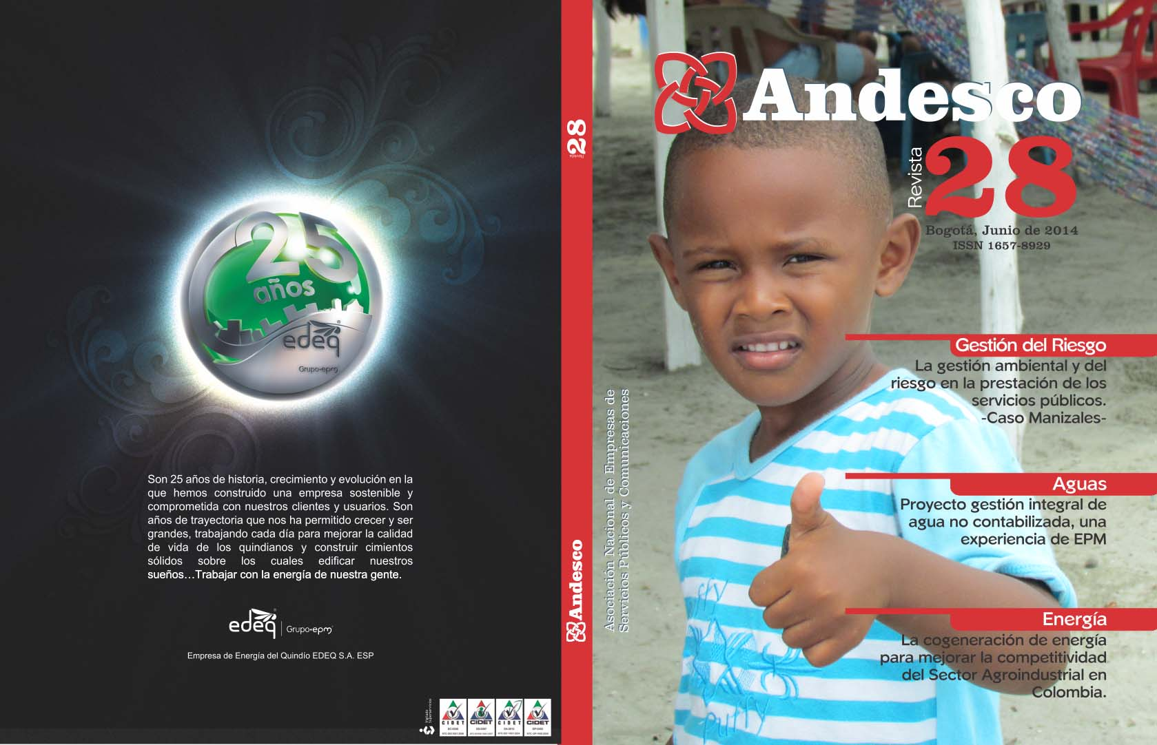 Revista Andesco